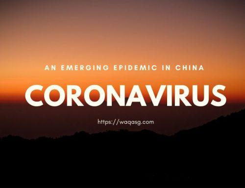 Coronavirus — An Emerging Epidemic in China